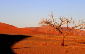 【纳米比亚图片】异域的纳米国    惊艳的红沙漠(12.14更新至鲸湾……)