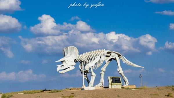 边境口岸,也是中国著名的恐龙之乡