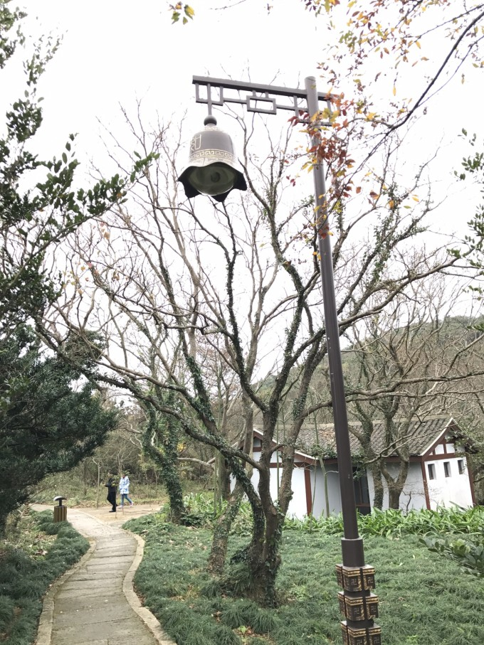 普陀的路灯也有佛家韵味