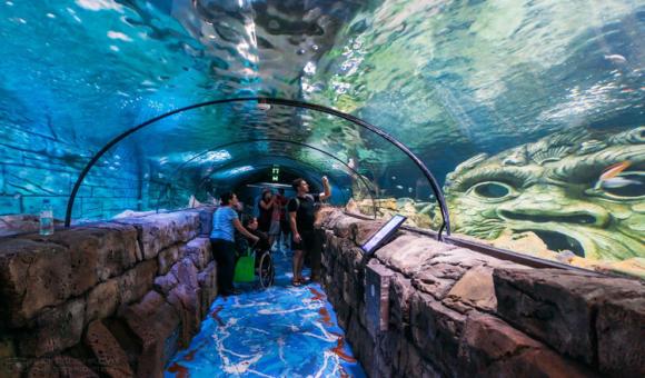 电子票·悉尼水族馆/悉尼野生动物园/悉尼塔/悉尼杜莎