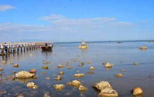 【北戴河图片】早春二月北戴河