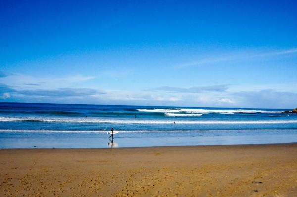 漂洋过海来看你【行走在澳大利亚的城市和市郊】