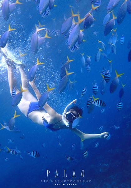 壁纸 海底 海底世界 海洋馆 水族馆 桌面 420_600 竖版 竖屏 手机