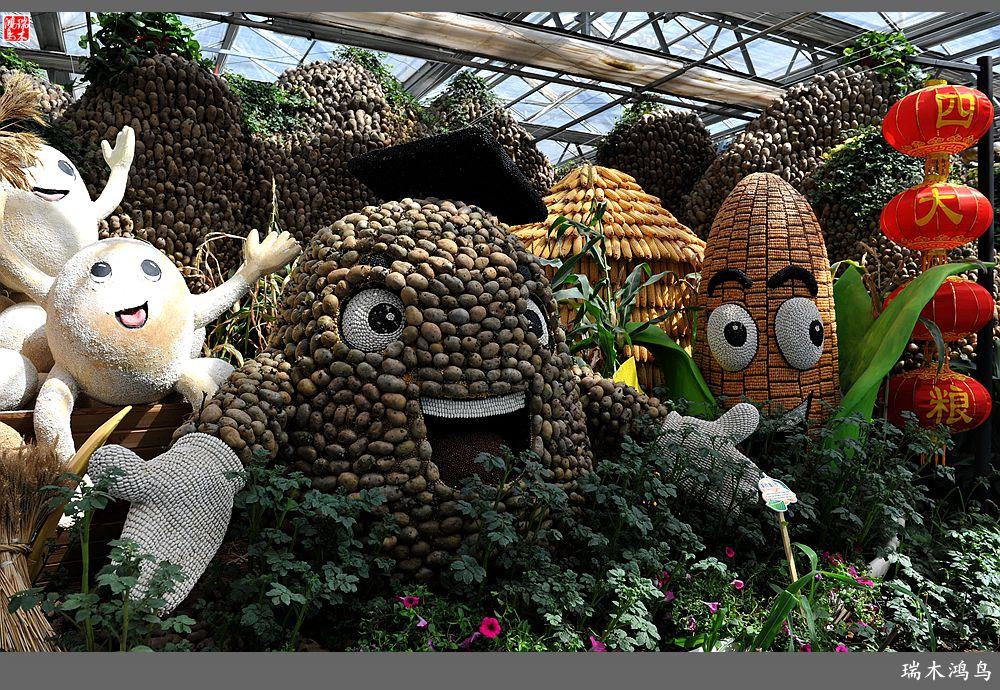 【原创摄影】第五届北京农业嘉年华——薯国演义