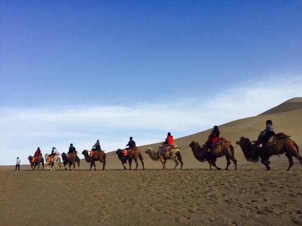 看,我和我乐乐骆驼的合照(乐乐的名字是我自己帮他取的),乐乐特别乖就是特别爱衬前面的骆驼.
