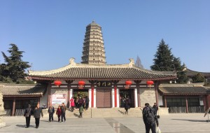 【扶风图片】冬日暖阳重游法门寺和首次周公庙