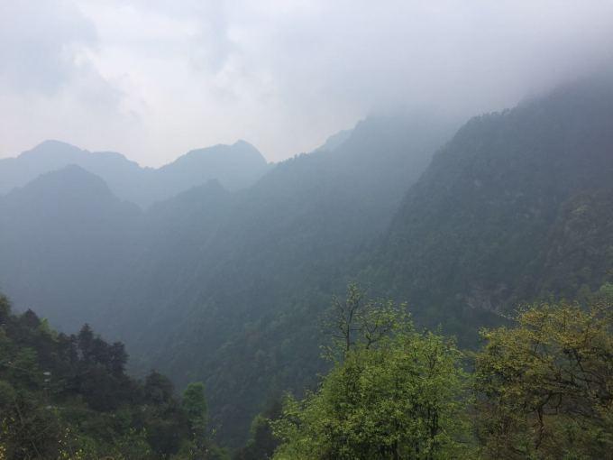 带有雾的风景图片头像