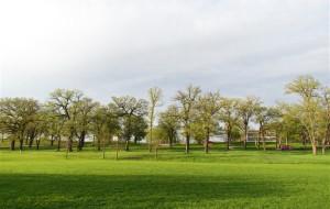 【威斯康星州图片】漫看州府Madison