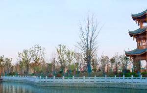 【阜阳图片】木一博览园
