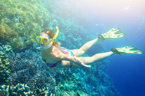 壁纸 海底 海底世界 海洋馆 水族馆 桌面 510_340