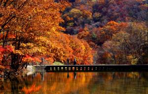 【辽宁图片】走进最美的秋天~~辽宁蒲石河森林公园