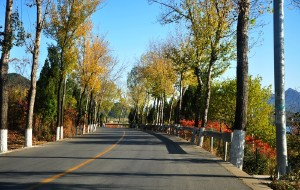 【蓟县图片】与秋天碰个头---蓟县八仙山观红叶