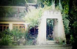 【桐庐图片】桐庐芦茨土屋------石舍香樟