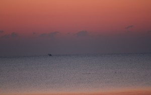 【威海图片】2012--日出海花红胜火,冬来海水黛如烟