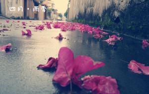 【中山图片】四月·雨季