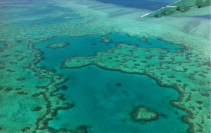 【澳大利亚图片】难以忘怀的蓝,无法忘记的友善--澳洲东部海岸线10天自驾游