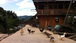 黔东南景点-占里侗寨
