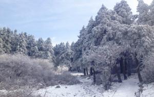【诸暨图片】初上太白的太白峰------2012末雪后东白山