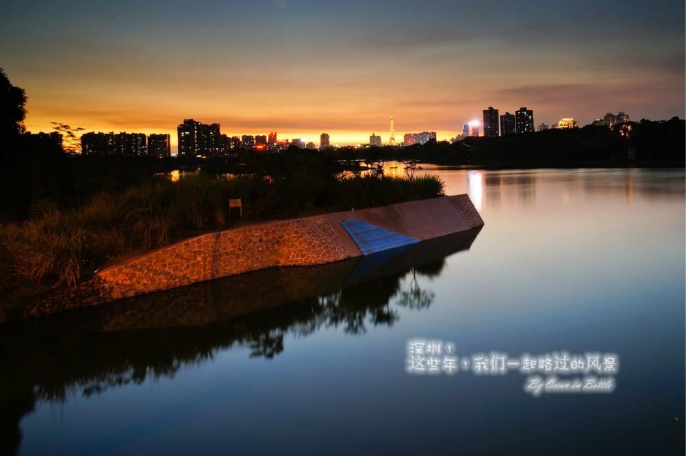 深圳,这些年,我们一起路过的风景