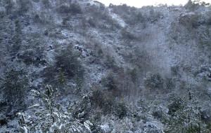 【抚州图片】江西抚州灵谷峰