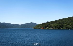 【箱根图片】小清新东京,箱根,镰仓暴走之行——与你看尽沿途不一样的美丽风景