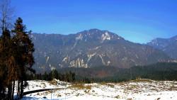 都江堰景点-龙池国家森林公园