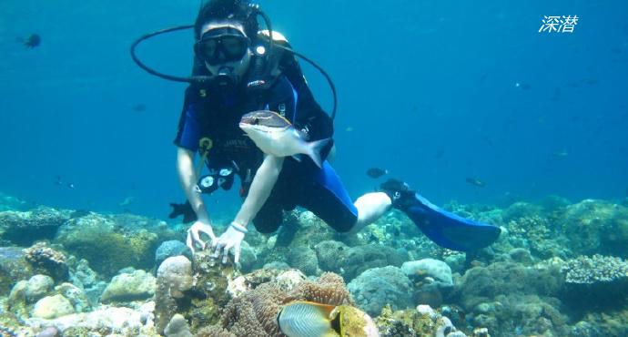 图兰奔是巴厘岛东北的一个海边小镇,没有银行,没有像样的咖啡馆和酒吧,甚至它的海边都没有很好的沙滩,拳头大小的石头遍布海湾,走路都觉得麻烦。但是,这里却是潜水者的乐园。被称为全世界最美的50个潜水胜地之一。