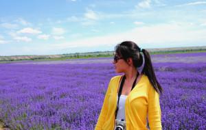 【乌鲁木齐图片】六月新疆去看花
