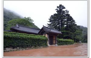 【束草图片】韩国 江原道 束草 新兴寺