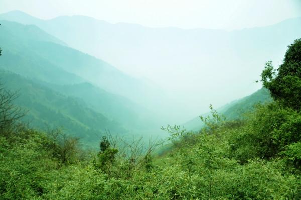 山里下雨的风景