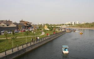 杨柳青图片