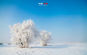 【长白山图片】[背包出品]❄️东北,你要冬天去❄️哈尔滨+雪乡+雪谷+长白山+雾凇岛游记(附送摄影攻略)