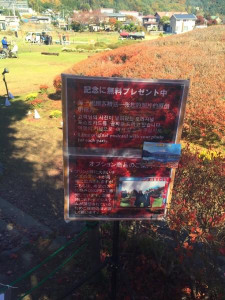 月富士山河口湖红叶节