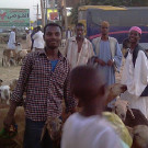 苏丹攻略图片
