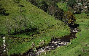 【哥伦比亚图片】【哥伦比亚】哥伦比亚迷人的山谷景色