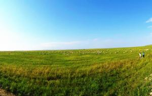 【室韦图片】悠长6月,天境之音,呼伦贝尔大草原休闲自由7日行。