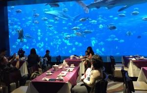 珠海美食-海底餐厅