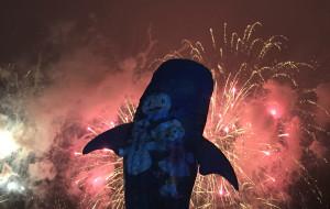 珠海娱乐-烟花幻彩横琴海
