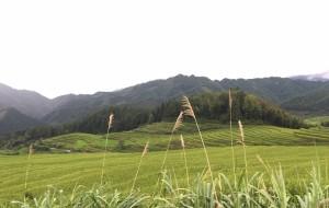 【连南图片】隐于山中的世外桃源——连南欧家梯田