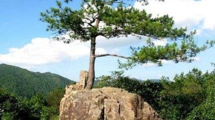 三百山风景名胜区位于江西省安远县境内,是安远县东南边境诸山峰的