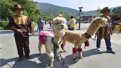 无锡无锡动物园(太湖欢乐园)门票