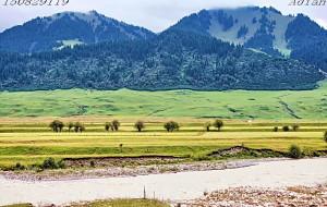 【唐布拉草原图片】险恶的天山路,美丽的乔尔玛