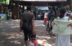 【广州长隆旅游度假区图片】广州长隆野生动物园