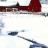 南极肥企鹅