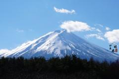 东京期会,感冬日富士山 赏台场夜景 泡日式温泉 尝传统居酒屋 做农场体验