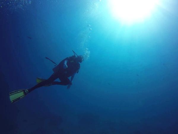 2018帕劳春节潜水游