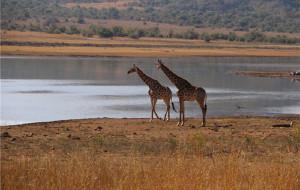 【开普敦图片】说走就走的南非之行