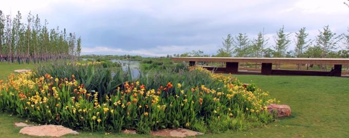 抚仙湖禄充风景区笔架山 昆明滇池斗南湿地公园全景图 第一天:攀枝花