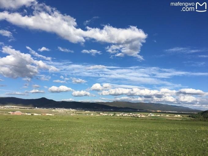 香格里拉的草原,对自由的向往. 藏族家访吃饭,看表演,很热情豪放.