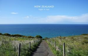 【但尼丁图片】遇见新西兰的初夏—2015年11月南岛14日自驾游(详细攻略+游记)